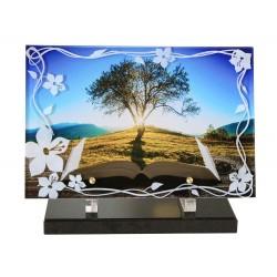 Plaque altuglass P-881 20x30cm