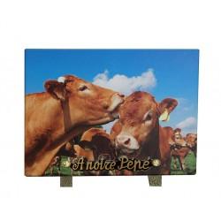 plaque cimetiere granit avec vaches