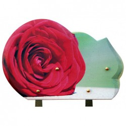 plaque tombale impression rose