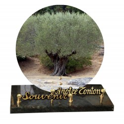 Plaque funeraire olivier