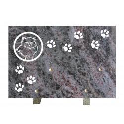 plaque mortuaire gravure de chat